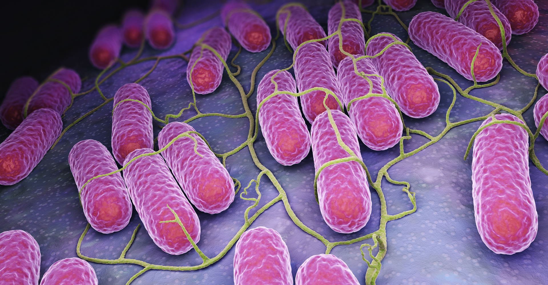 KILLING MULTIDRUG RESISTANT BACTERIA AND FUNGI IN MINUTES